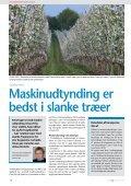 Slanke træer bedst til maskinudtynding - Gartneribladene - Page 6
