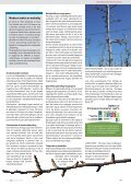 Slanke træer bedst til maskinudtynding - Gartneribladene - Page 7