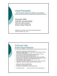 Visuel Perception - Anders Degn Pedersen, specialist i ...