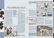 PDF-file: Dalmatiner - Dansk Kennel Klub