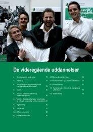 De videregående uddannelser - Fonden for Entreprenørskab