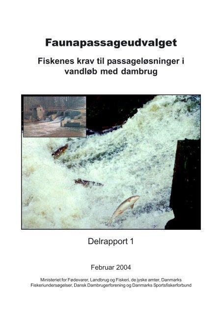 Fiskenes krav til passageløsninger i vandløb med dambrug