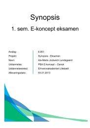 Synopsis - E-concept fall 2012 - Erhvervsakademiet Lillebælt