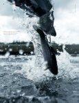 Miljøvenligt fiskeopdræt - Danmarks Tekniske Universitet - Page 4
