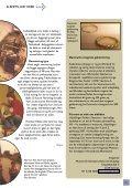 Nr. 7 - albertslund nord - Page 5