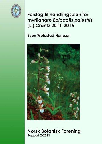 Forslag til handlingsplan for myrflangre Epipactis palustris (L ...