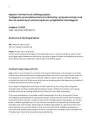 Rapport - Kalundborg Gymnasium og HF