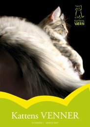 Kattens Venner Nr. 1 - Kattens Værn