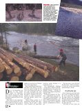 BLODSLIT: Når tømmeret setter seg fast, er det ingen ... - Vassfaret - Page 3