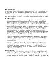Bestyrelsens beretning 2007-08