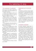 Voldsteder i Viborg amt - Page 6