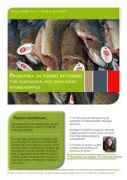 Probiotika og foders betydning for sundheden hos ... - ICROFS