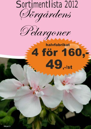 UNIKA PELARGON - Solberga Blommor