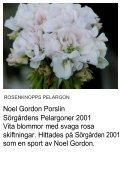 UNIKA PELARGON - Solberga Blommor - Page 4