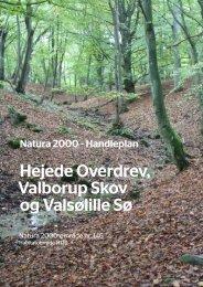 Hejede Overdrev, Valborup Skov og Valsølille Sø - Lejre Kommune
