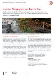 Invasive Neophyten auf Baustellen - Regionalkonferenz Oberland-Ost