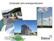 Innlandet som energiprodusent - NINA