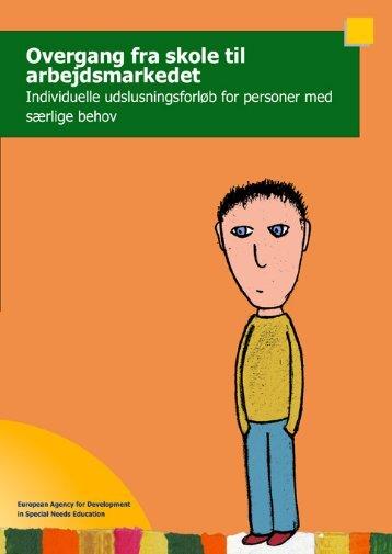 Overgang fra skole til arbejdsmarkedet Individuelle ...