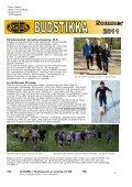 Budstikka Sommer 2011 - Page 6