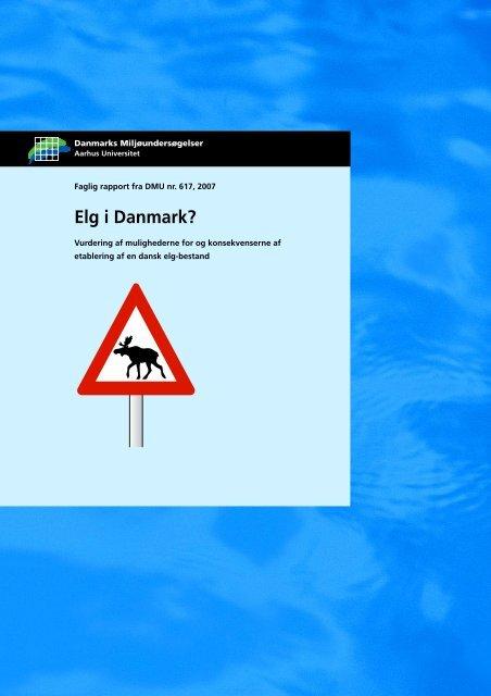 Elg i Danmark? - DCE - Nationalt Center for Miljø og Energi