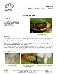 Bulletin d'information No 22 – 13 juin 2013 - Agri-Réseau
