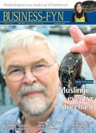 Fyens Stiftstidende, Business-Fyn, 25. juni 2013 - Syddansk ...