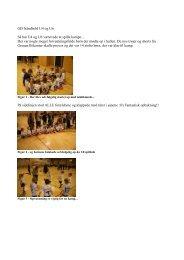 Nyt fra holdene indtil nu - GIF håndbold
