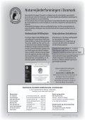 Naturvejledning i mørke - Naturvejlederforeningen i Danmark - Page 2