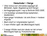 Nematoder i Norge