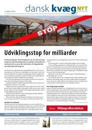 Dansk kvæg nyt nr 11 2008