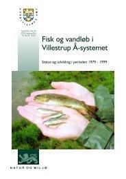 Fisk og vandløb i Villestrup Å-systemet - Biotop