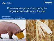 Klimaændringernes betydning for ... - LandbrugsInfo