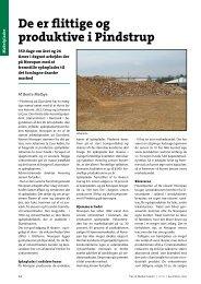 Novopan Træindustri A/S (pdf) - Træ - DI