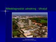 Billeddiagnostisk udredning 2: Ultralyd, FAST