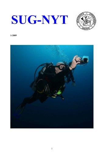 SUG Budget 2009 - Skovshoved Undersøiske Gruppe