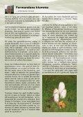 November 2009 - Page 3