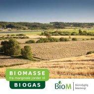 Biomasse fra marginale jorder til biogas. - AgroTech