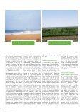 Lindas med skæremrk - Page 5