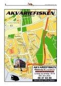Nr. 3 2008 - Vestsjællands Akvarie- og Terrarieklub - Page 6