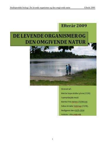 Studieprodukt om miljø og elevernes handlekompetence i forhold til ...