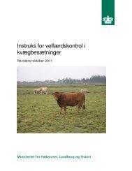Instruks for velfærdskontrol i kvægbesætninger (5494 kb)