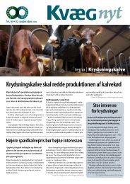 Kvæg Nyt nr. 16 2010 - Videncentret for Landbrug