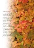 Bladet - DCA - Nationalt Center for Fødevarer og Jordbrug - Page 3
