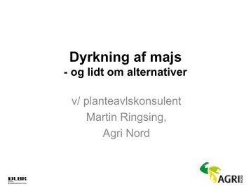 Martin Ringsing: Aktuelt i majs - Agri Nord
