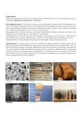 MATERIALE - Rum - Page 2
