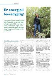 Er energipil bæredygtig? - Biopress