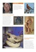 Foredragskatalog - Naturhistorisk Museum - Page 6