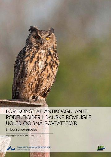 Forekomst af antikoagulante rodenticider i danske rovfugle, ugler og ...