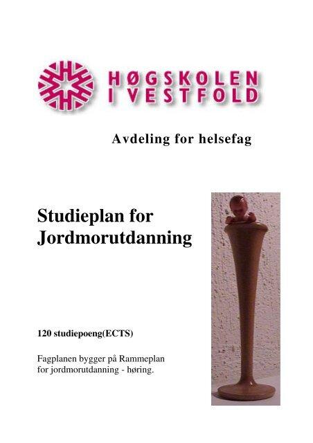 Vedlegg 1 - Høgskolen i Vestfold