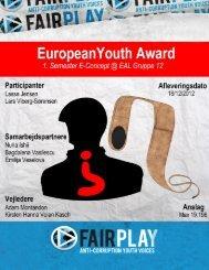 EYA Rapport - E-concept fall 2012